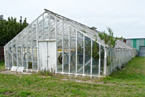 Contaminated land/ Site Investigation of orchard and glasshouse
