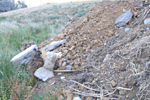 Assessment and remediation of cleanfill/landfill sites in Marlborough